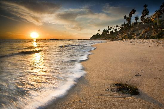 Laguna Beach Sunset - Retreat with Emily Brandon